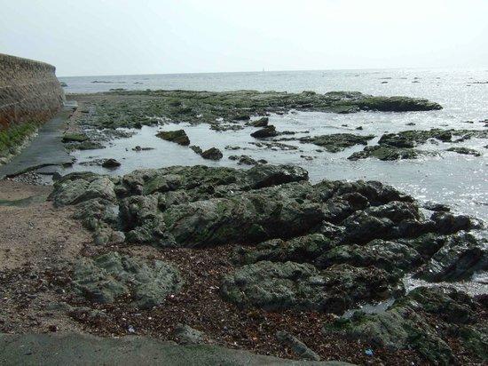 Omaezaki Coast: 静岡最南端の木柱の裏にあり、引き潮になると出現する岩場