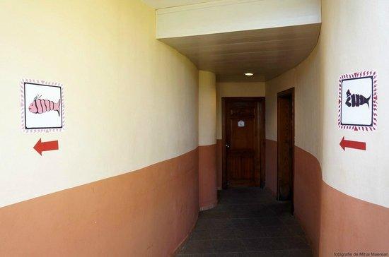 Grand Bahia Principe Bavaro : Toilets by the pool