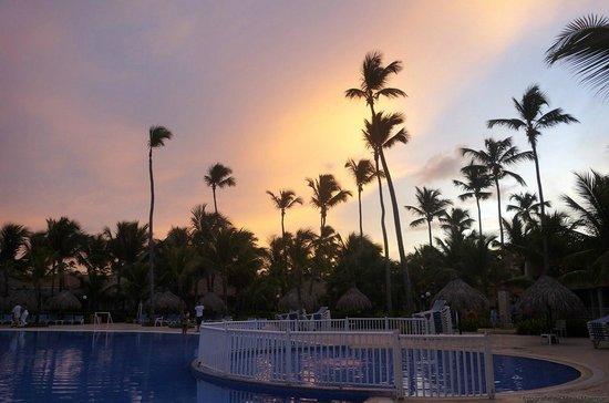 Grand Bahia Principe Bavaro : Palms by the pool