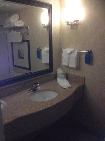 Hilton Garden Inn Beaufort: Clean and well laid out bathroom