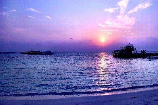 Maafushivaru: Tramonto dalla spiaggia