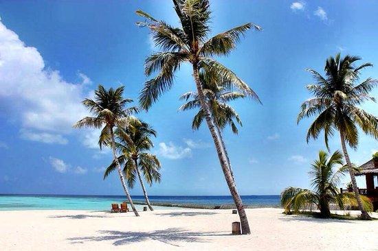 Maafushivaru: Spiaggia da sogno