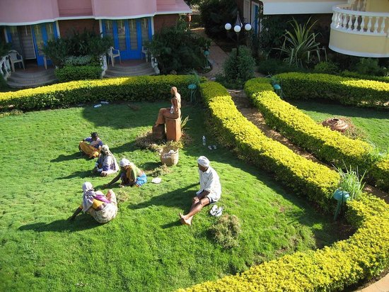 Coconut Grove: газонокосильщики