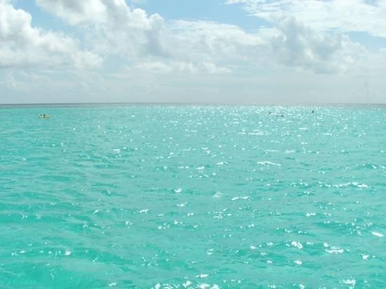 Club Med Columbus Isle : turquoise....