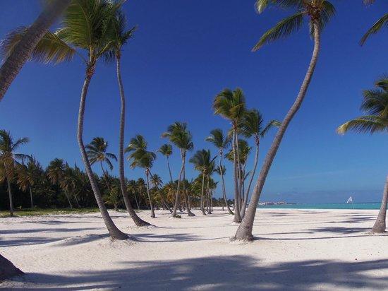 Marinarium Excursions - Discovery Cruise: LINDA PRAIA