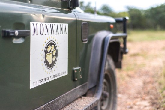 Monwana Game Lodge: Great Game Drives