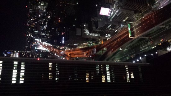 Ana Intercontinental Tokyo: View from the bar