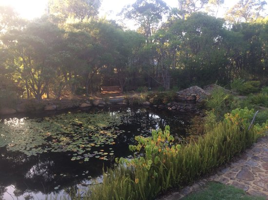 Quality Inn Margaret River: Beautiful surroundings