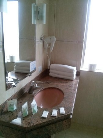 Caravelle Palace Hotel : Banheiro
