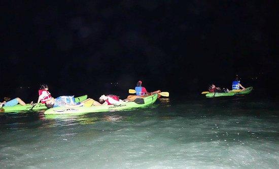Bioluminescent (Mosquito) Bay: Биозалив, Вьекес
