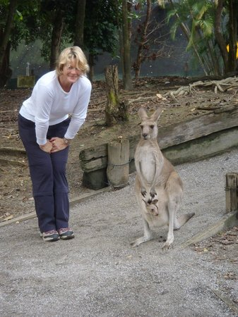 Featherdale Wildlife Park: getting close