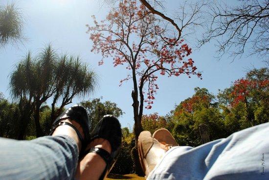 Inhotim : Uma pausa para o descanso.