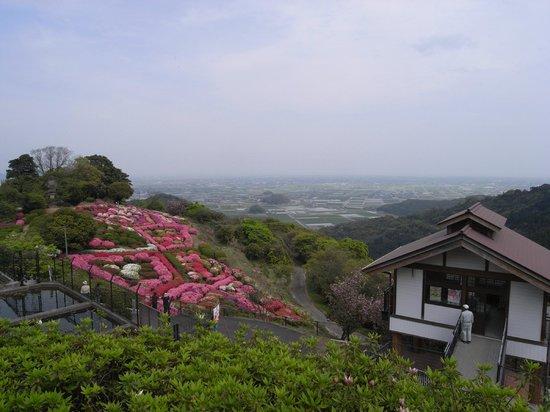 Restaurantes en Shiroishi-cho