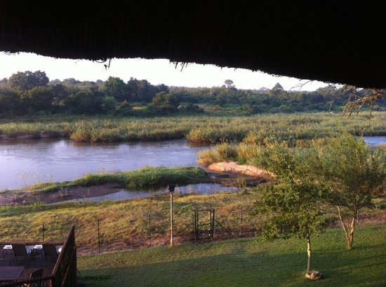 Sabie River Bush Lodge: We saw a hippo in the river outside the hotel