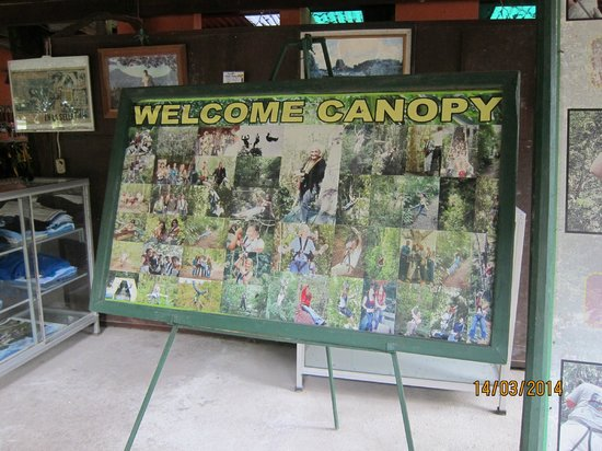 Canopy Tours Tikal: welcome!