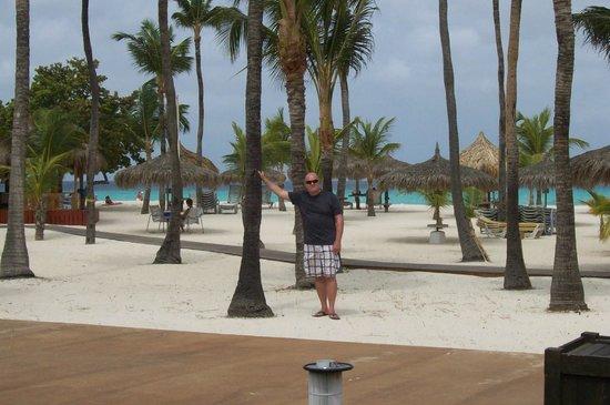 Manchebo Beach Resort & Spa : beautiful grounds