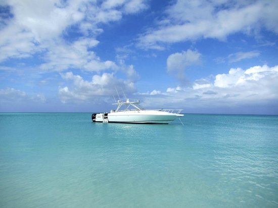 Turtle Voyager Yacht Charter