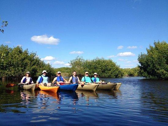 Shurr Adventures Everglades : Everglades Feb 2014