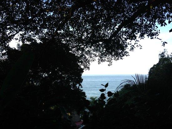 Playa Escondida: View from Rocasa