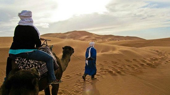 Fes 4x4 Excursion  Day Tours: Camel trekking with Hassaine