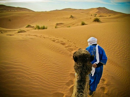 Fes 4x4 Excursion  Day Tours: Camel trekking in the Sahara