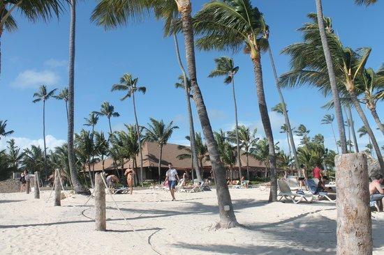 Majestic Colonial Punta Cana : Lindo