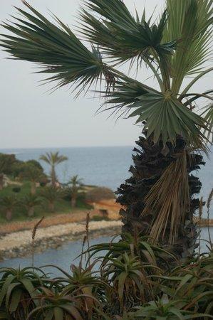 Mellieha Bay Hotel : 9