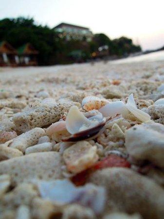 Mountain Resort Koh Lipe: beach front of mountain resort