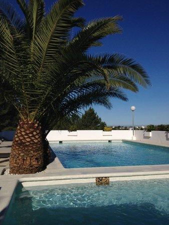 Sunset Oasis Ibiza : Pool Area