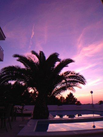 Sunset Oasis Ibiza: Sunset