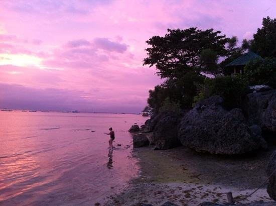 Sea Turtle House Moalboal: Beautiful pinky sunsets