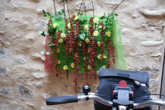 CAN BO DE PAU: Aparcamiento de bicicletas