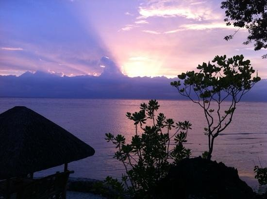 Sea Turtle House Moalboal : Ah what a lovely view