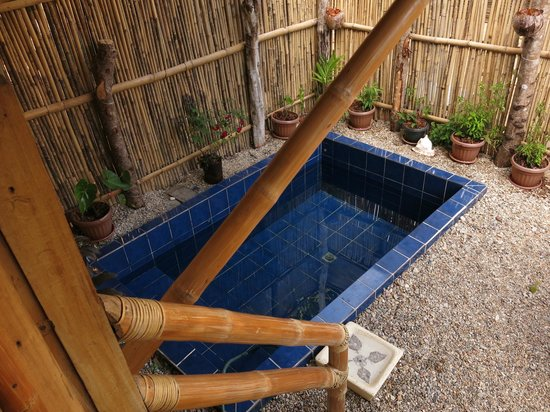 Cashew Grove Beach Resort: Private Pool of Deluxe Beachfront Cottage