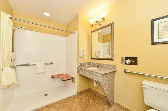 Comfort Inn & Suites: Handicap Roll-in Shower Bathroom