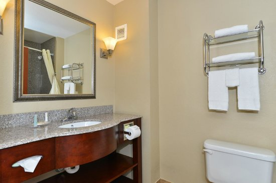 Comfort Inn & Suites : Standard Bathroom