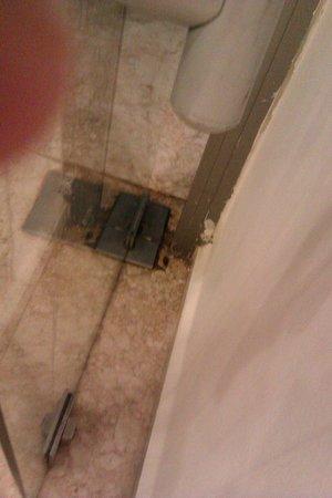 Belvista Hotel: При входе в столовку долхлый таракан