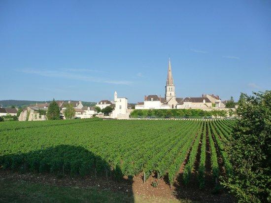 Château de Cîteaux La Cueillette : Le coeur de Meursault