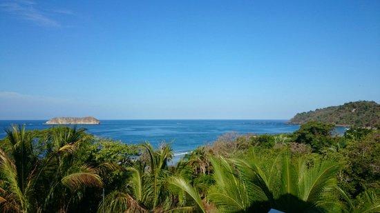 Hotel Coco Beach : 8