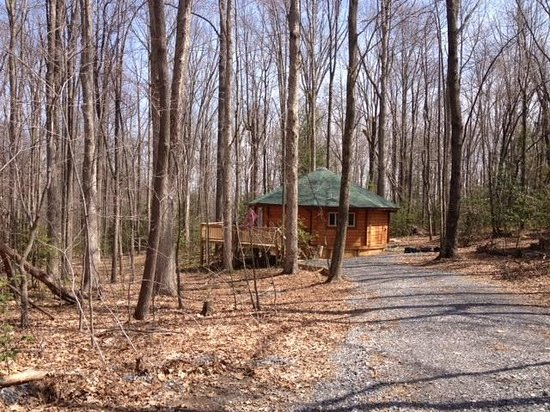 Country Road Cabins: Distant Shot of Yurt