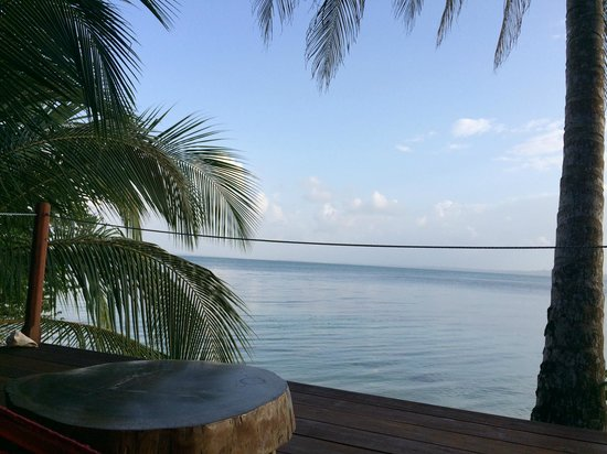 Al Natural Resort: Vue de la chambre