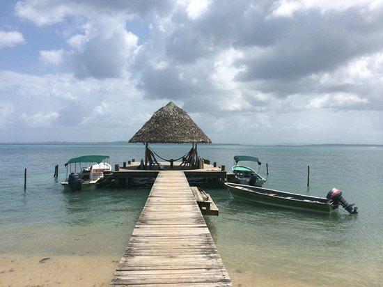 Al Natural Resort: Arrivee a l'hotel