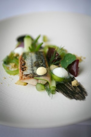 Storrs Hall: Soused mackerel, English wasabi, char grilled cucumber, baby beetroot