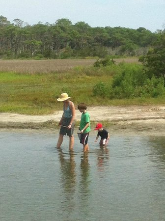 Assateague Beach : Clamming at the back bay.