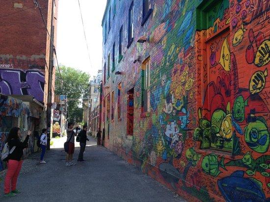 Tour Guys: Graffiti alley during our Graffiti in Toronto tour