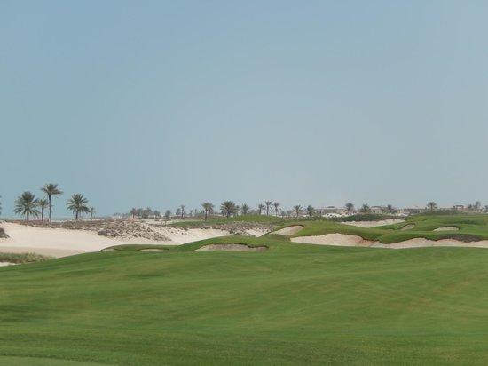 Saadiyat Beach Golf Club: View of the course