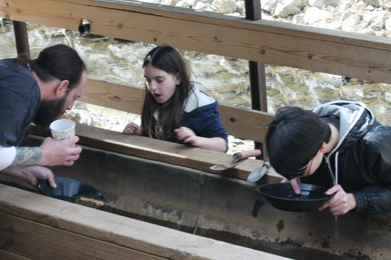 Big Thunder Gold Mine: learning to pan for gold
