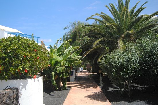 Aparthotel Paradise Island : Les Allées