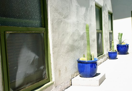 The Historic Hotel Congress: Patio/sun deck