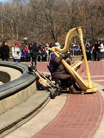 Central Park : Harp Player - Bethesda Fountain area